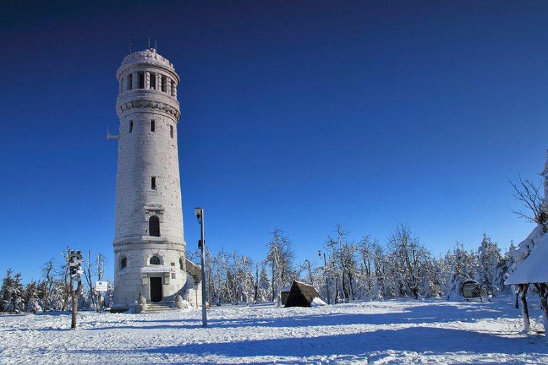 zima28_forum